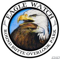 Eagle Watch logo concept