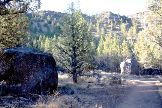 Tam trail