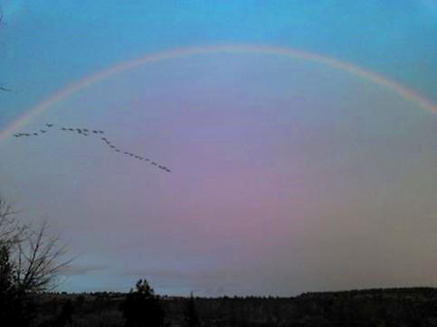 rainbow over deschutes