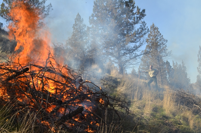 Ranger Supervisor, Chris Gerdes stands watch over a controlled burn near the Deschutes Campground.