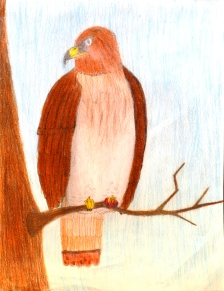 Culver Middle School - 1st Place Colored Drawing - Uriel Mejia