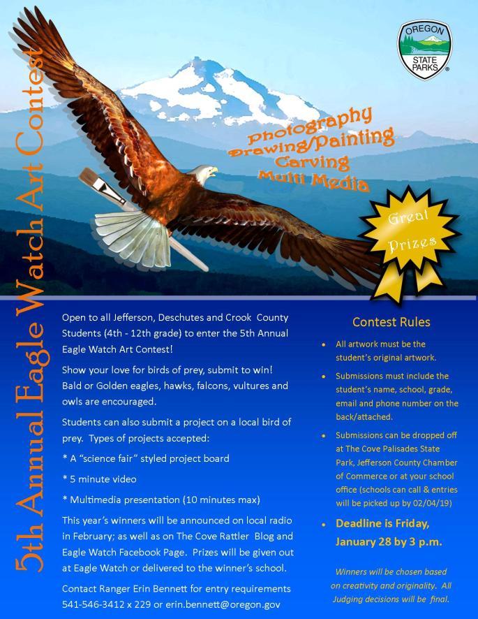 5th Eagle Watch Art Contest Flyer